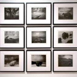 Illusion Series: photogravure series of 9