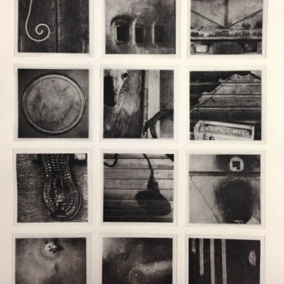 Lexicon: Anderson: black ink: 12 photogravure etching plates (polymer)