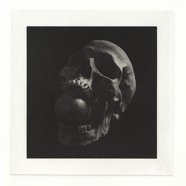 Skull Egg: photogravure