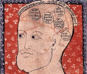 14th century diagram of the brain (detail) (via Cambridge University Library)