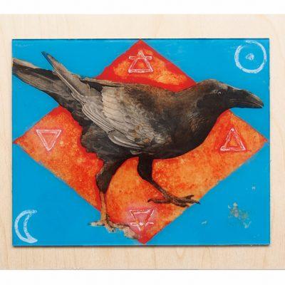 Ed's Raven 10