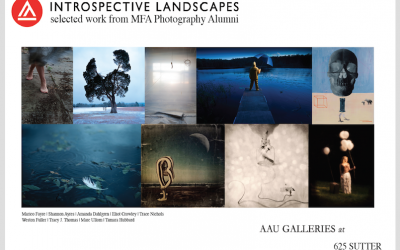 Introspective Landscape Show