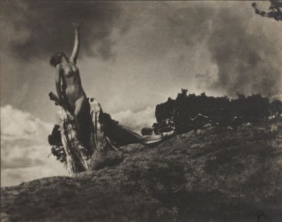 Anne Brigman, Soul of the Blasted Pine, 1906 Wilson Centre for Photography