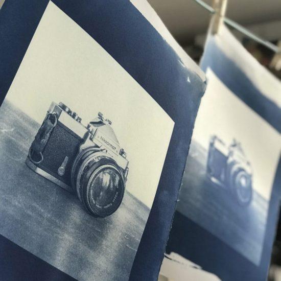 cyanotype hanging